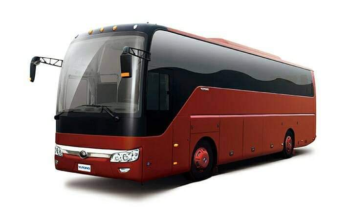 Chinese Brand New Buses